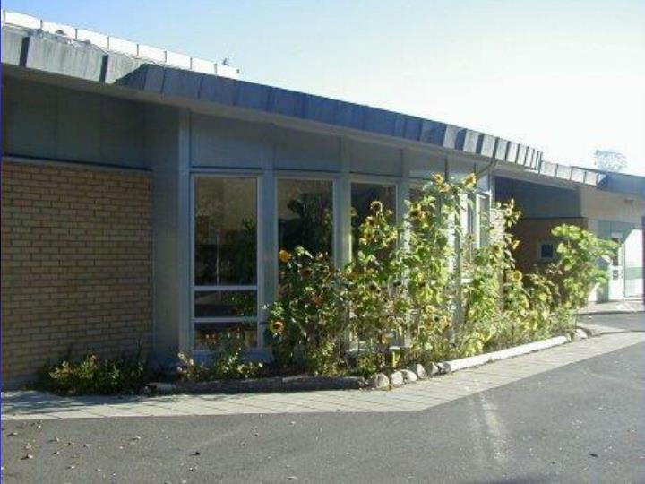 Skolehagen