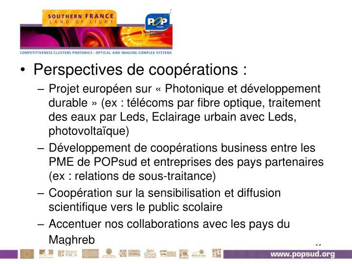 Perspectives de coopérations :