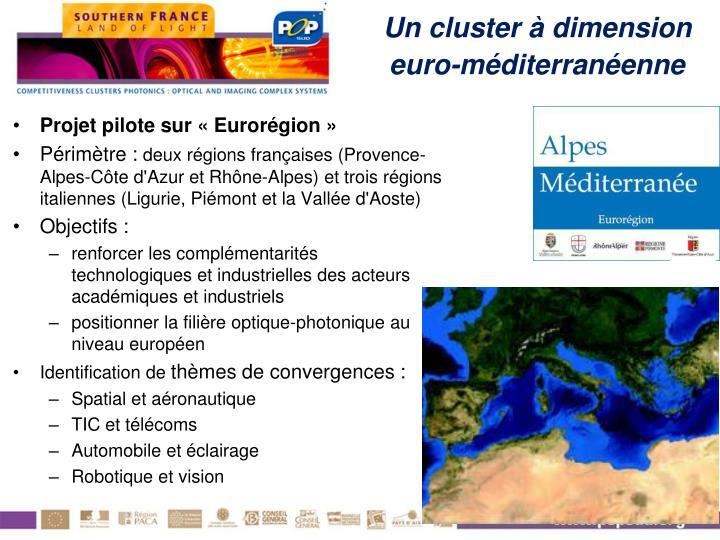Un cluster à dimension euro-méditerranéenne