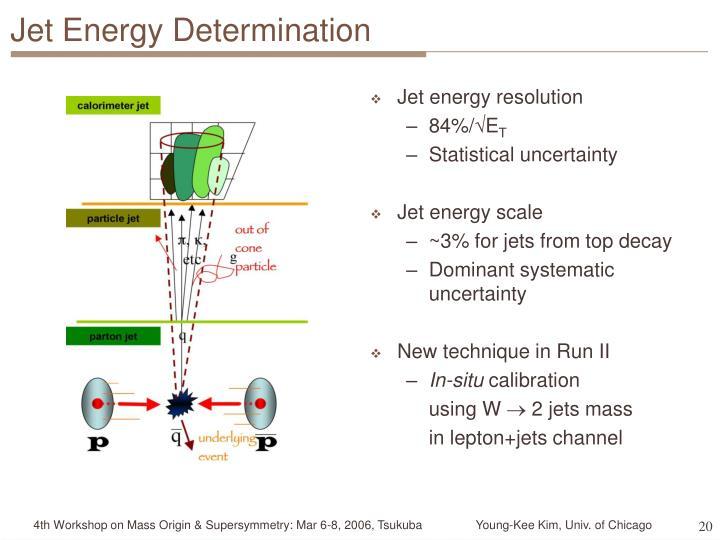 Jet Energy Determination