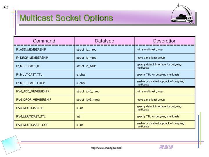 Multicast Socket Options