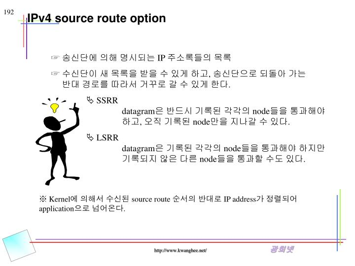IPv4 source route option