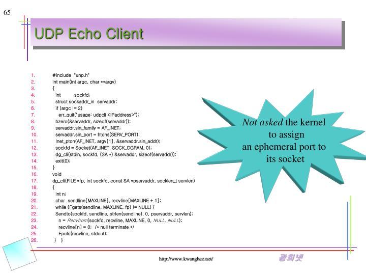 UDP Echo Client