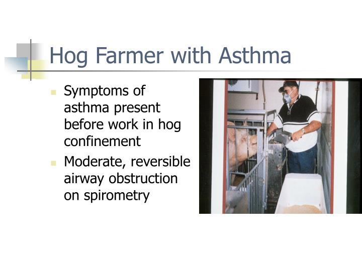 Symptoms of asthma present before work in hog confinement