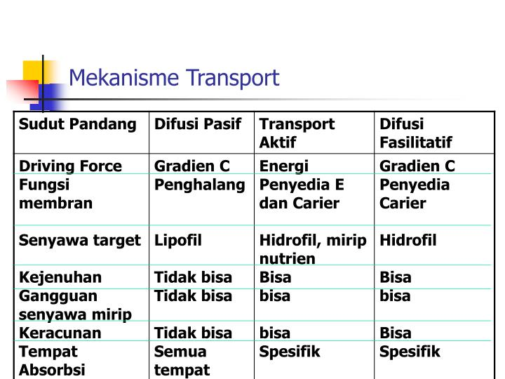 Mekanisme Transport