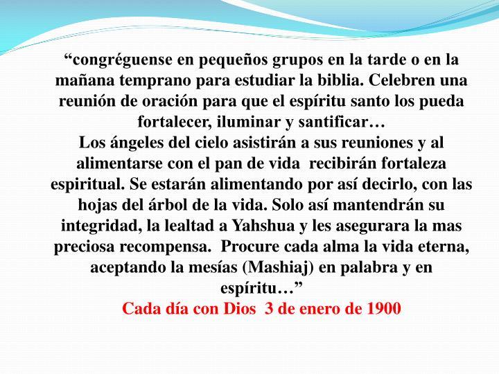 """""""congréguense en pequeños grupos en la tarde o en la mañana temprano para estudiar la biblia. Celebren una reunión de oración para que el espíritu santo los pueda fortalecer, iluminar y santificar…"""