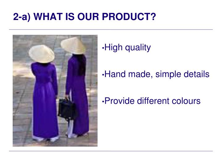 2-a) WHAT IS OUR PRODUCT?