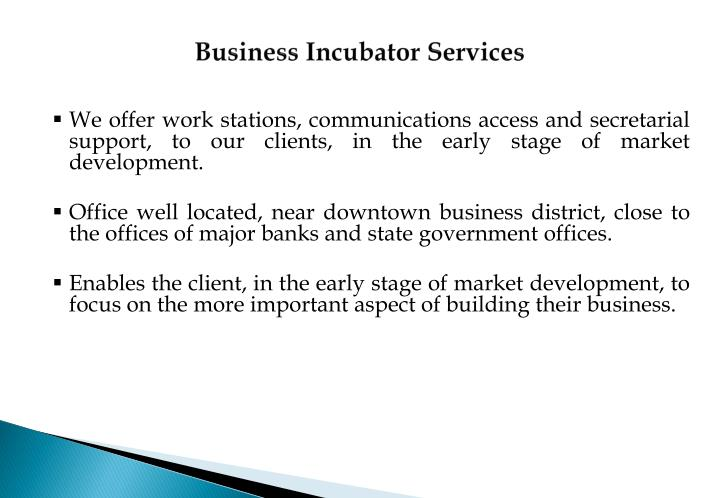 Business Incubator Services
