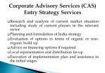 corporate advisory services cas entry strategy services