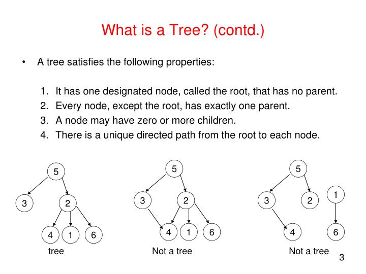 What is a tree contd