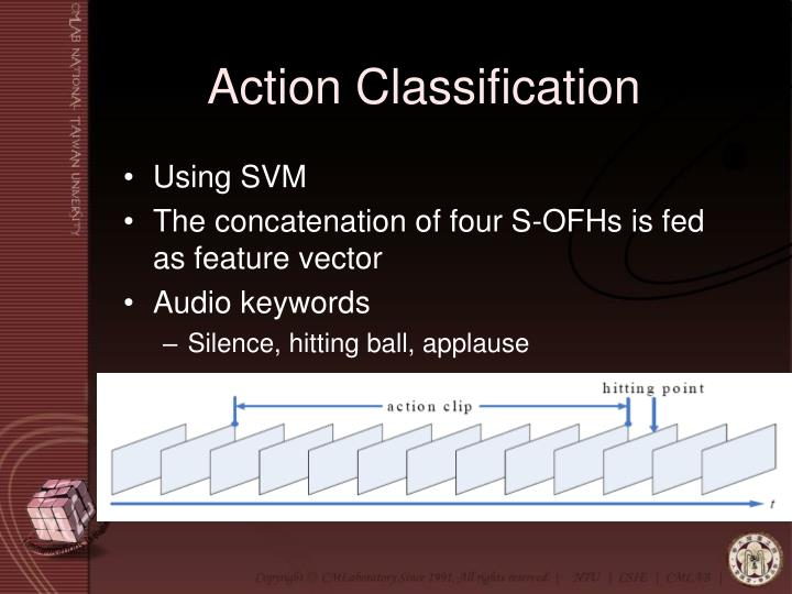 Action Classification
