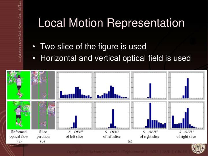 Local Motion Representation