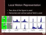 local motion representation1
