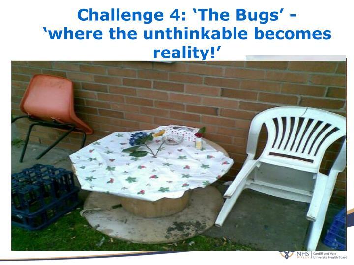 Challenge 4: 'The Bugs' -