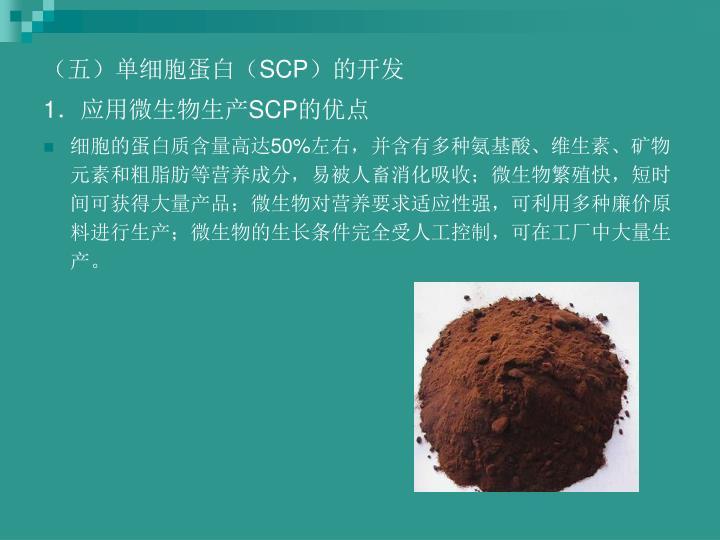 (五)单细胞蛋白(