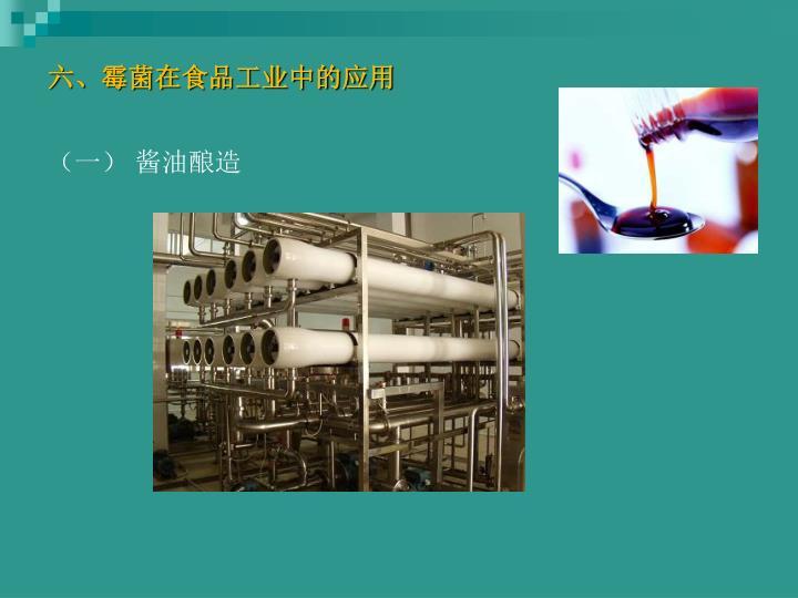 六、霉菌在食品工业中的应用