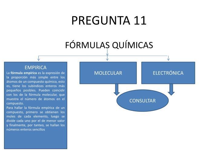 PREGUNTA 11