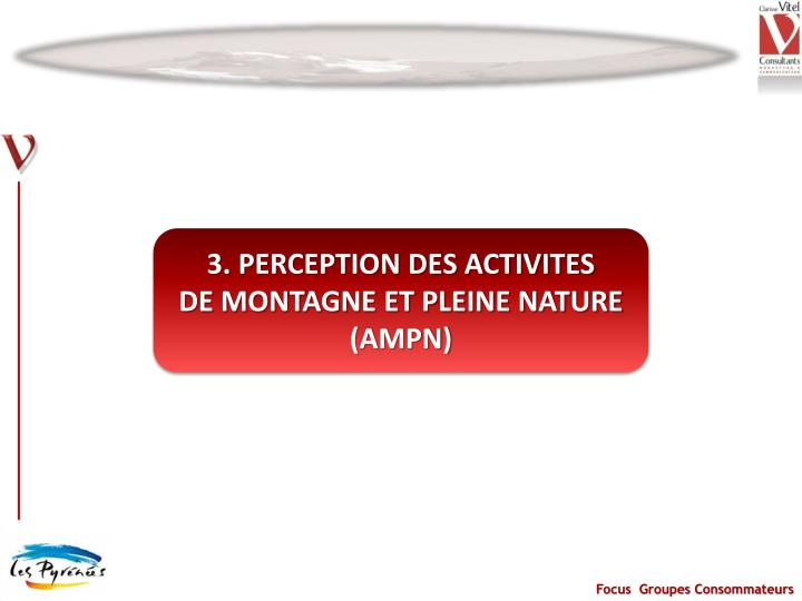 3. PERCEPTION DES ACTIVITES