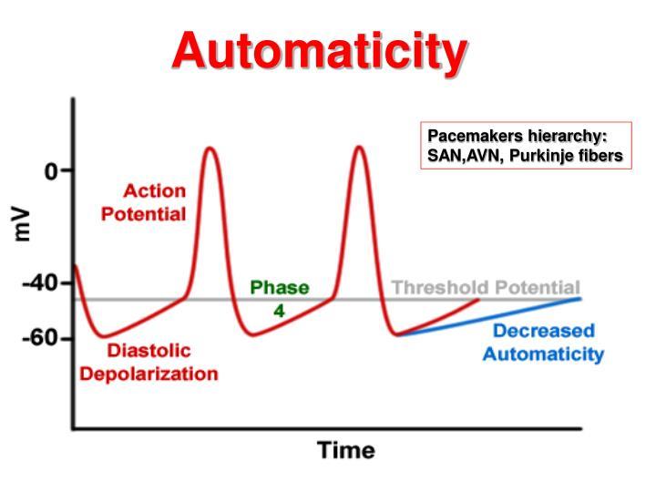 Automaticity