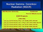 nuclear gamma cerenkov radiation ngcr