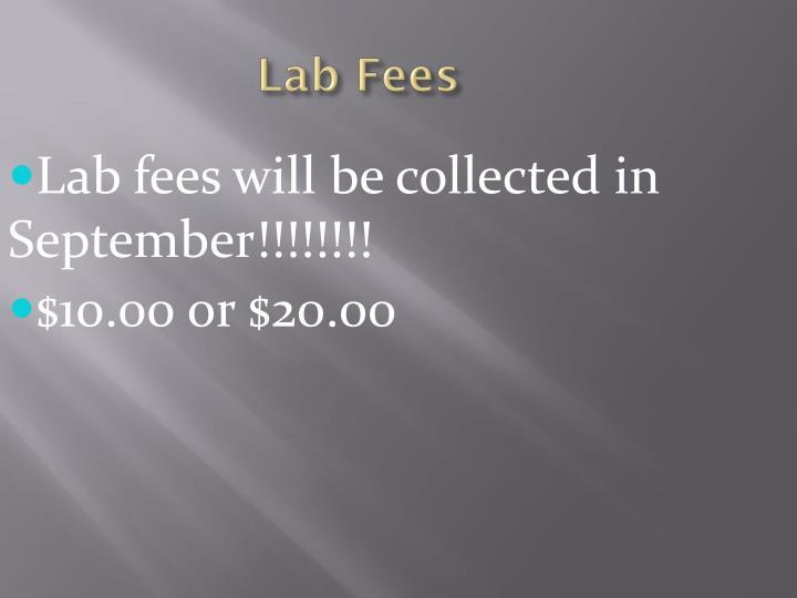 Lab Fees