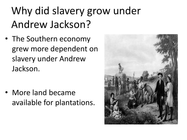 Why did slavery grow under Andrew Jackson?