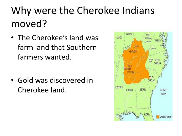 Why were the Cherokee Indians moved?