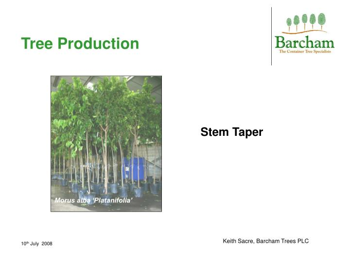 Tree Production