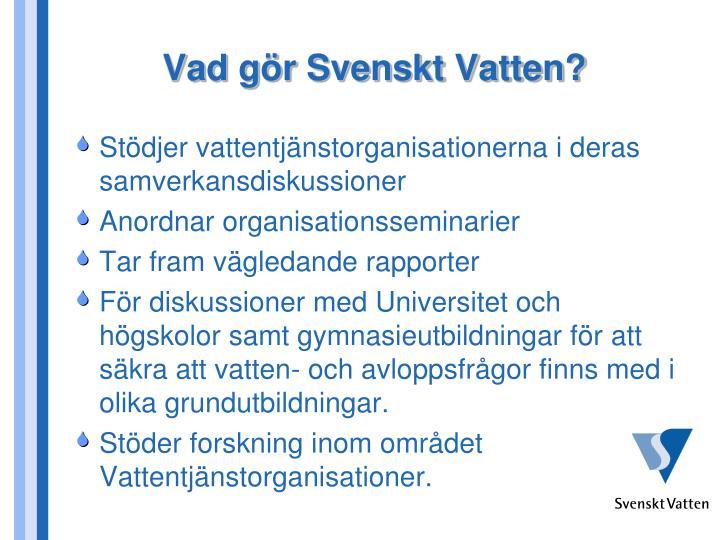 Vad gör Svenskt Vatten?