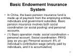 basic endowment insurance system