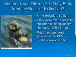 southern sea otters are they back from the brink of extinction