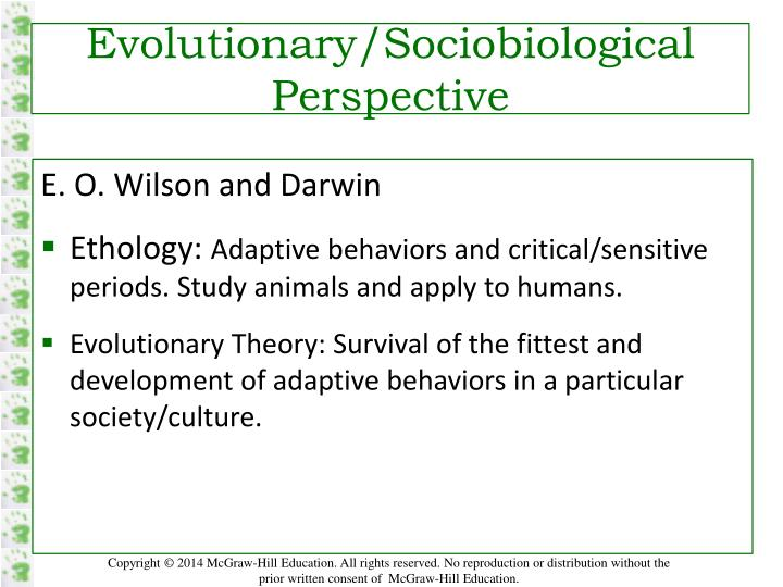 Evolutionary/Sociobiological Perspective
