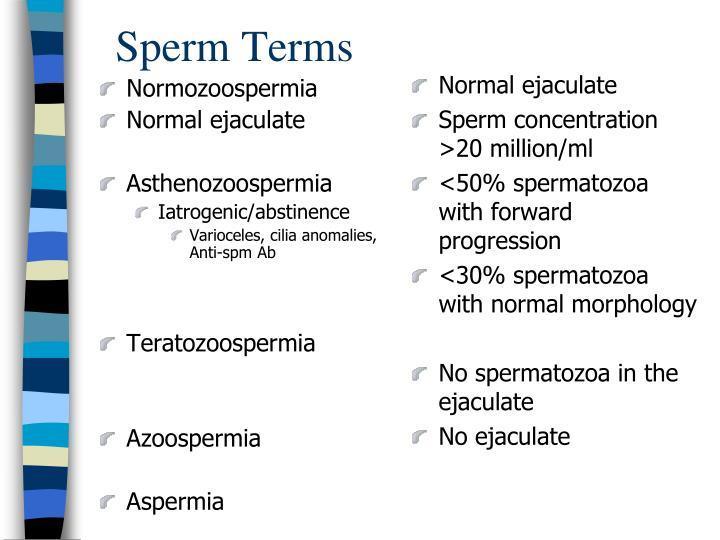Sperm Terms