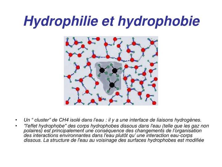 Hydrophilie et hydrophobie