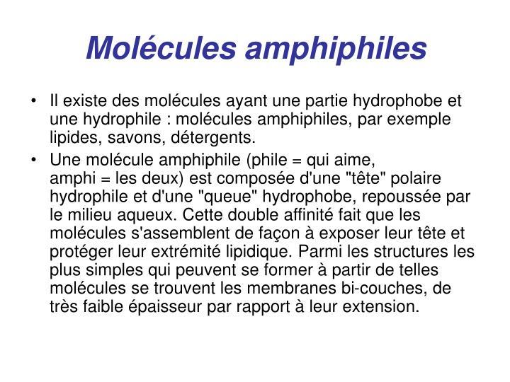 Molécules amphiphiles