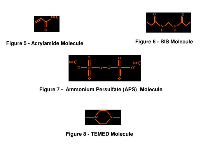 Figure 6 - BIS Molecule
