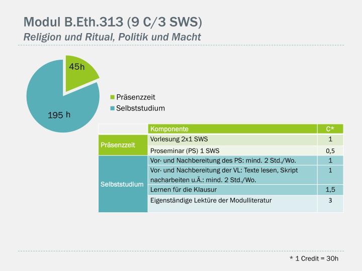 Modul B.Eth.313 (