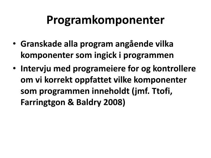 Programkomponenter