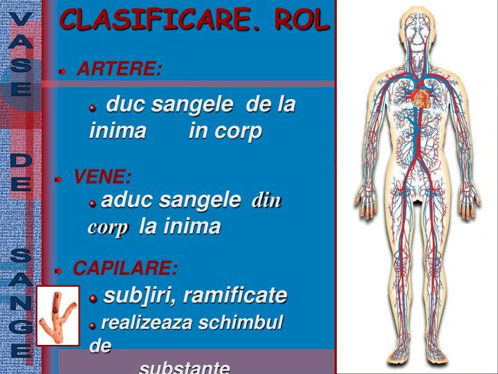 CLASIFICARE. ROL