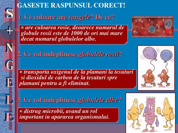 GASESTE RASPUNSUL CORECT!