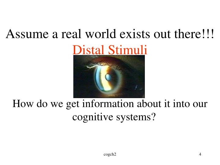 Assume a real world exists out there!!!