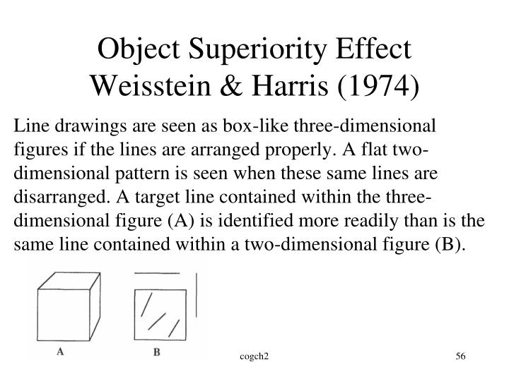 Object Superiority Effect
