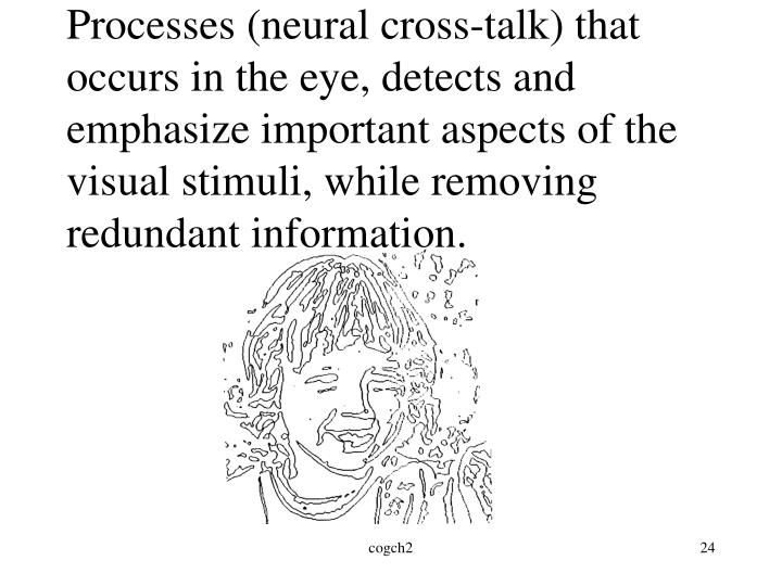Processes (neural cross-talk) that occurs in the eye, detects and emphasize important aspects of the visual stimuli, while removing redundant information.