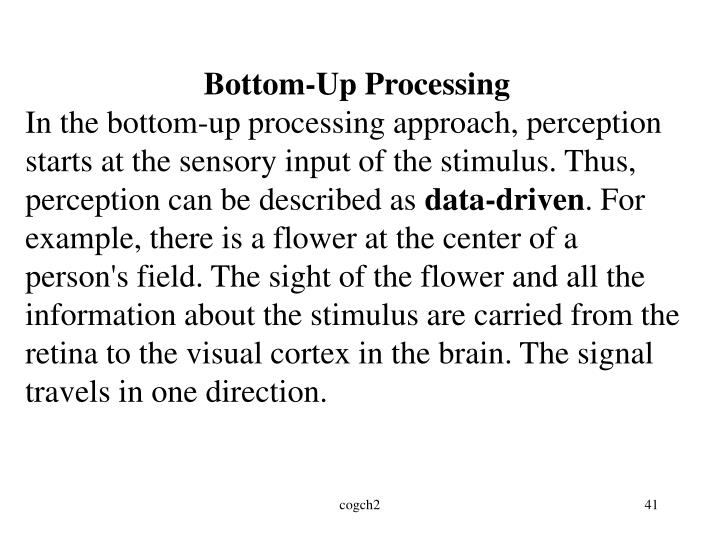 Bottom-Up Processing