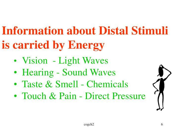 Information about Distal Stimuli is carried by Energy