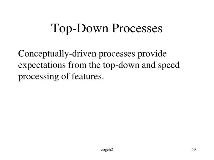 Top-Down Processes
