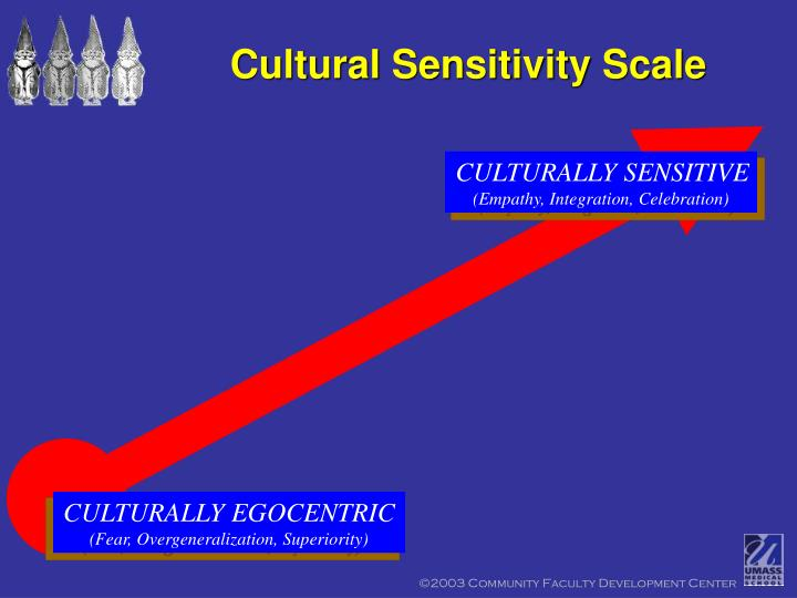 Cultural Sensitivity Scale