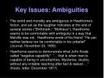 key issues ambiguities1