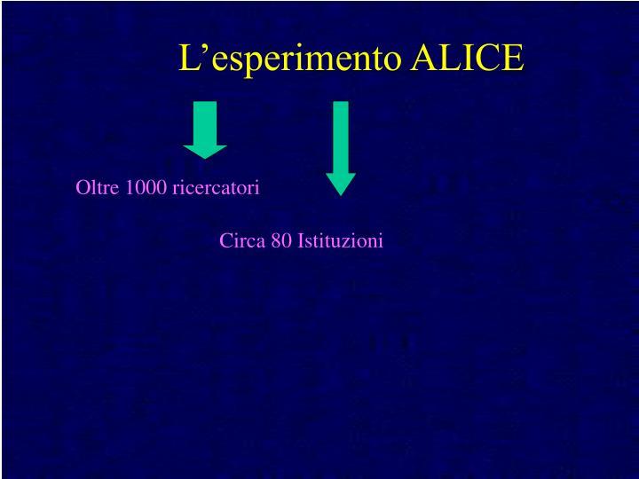 L'esperimento ALICE