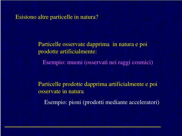 Esistono altre particelle in natura?